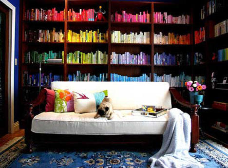 colored bookshelves - Colored Bookshelves
